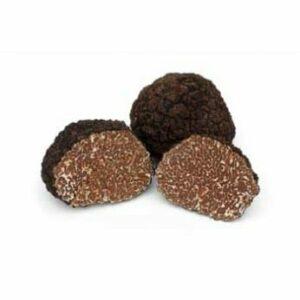 Tuber uncinatum ou truffes de Bourgogne